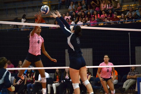 Rice defeats UTEP 3-0