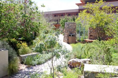FloraFEST fundraiser to benefit Chihuahuan Desert Gardens
