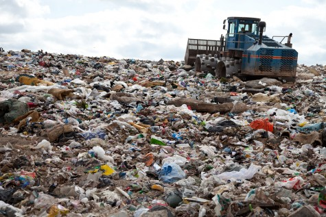 Professor aims to help turn rotting trash into a profit