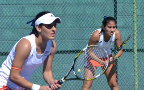 Tennis grab important pair of wins at home