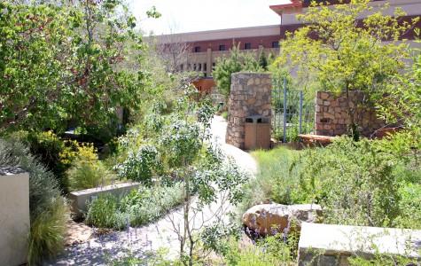 FloraFEST encourages eco-friendly mindset through native plants sale