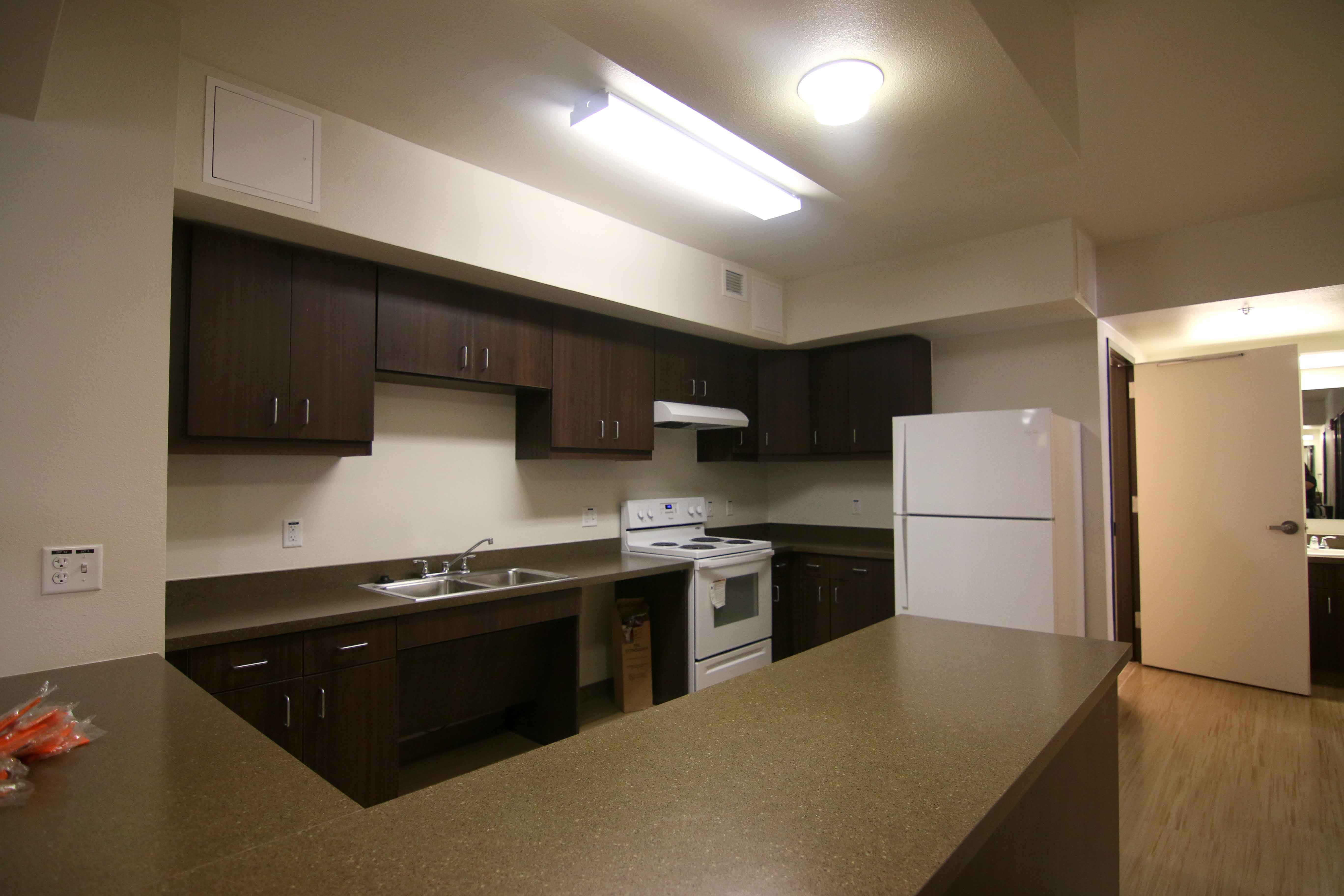 A kitchen of one of the dorm rooms.
