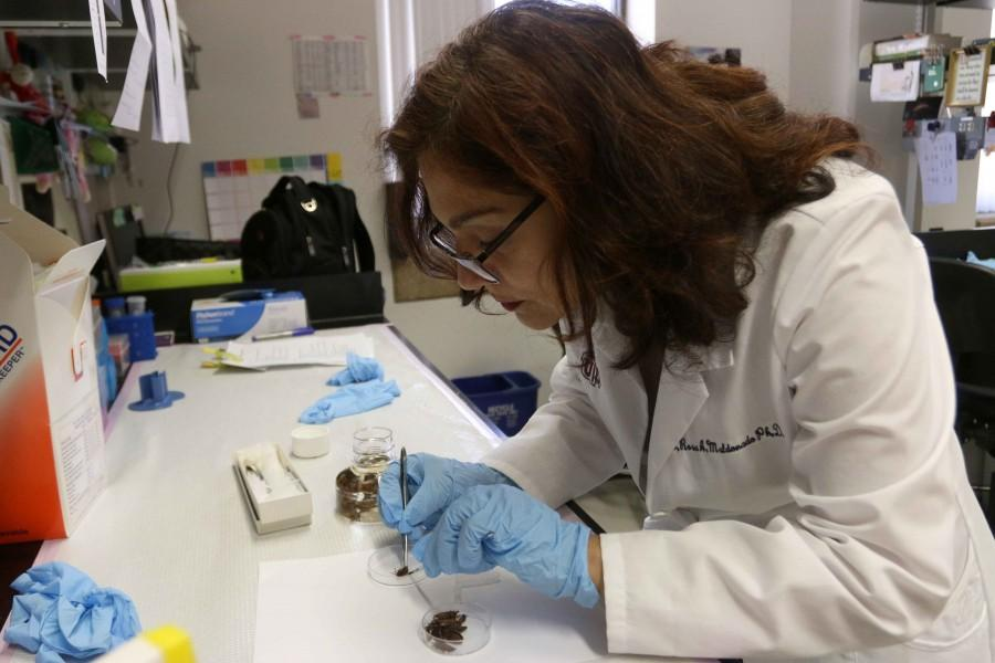 Chagas, a parasitic disease that affects the heart, is present in West Texas.