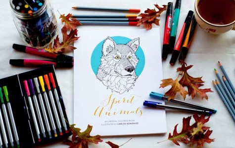 MindCanvis coloring books promote interactive art