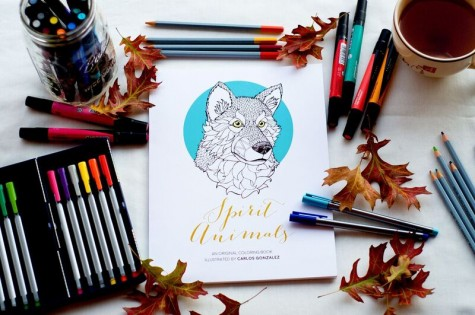 """""""Spirit Animals"""" is the title of the coloring book illustrated by Carlos Gonzalez."""