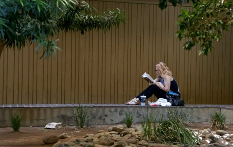 Five chillaxing spots to mellow out on campus