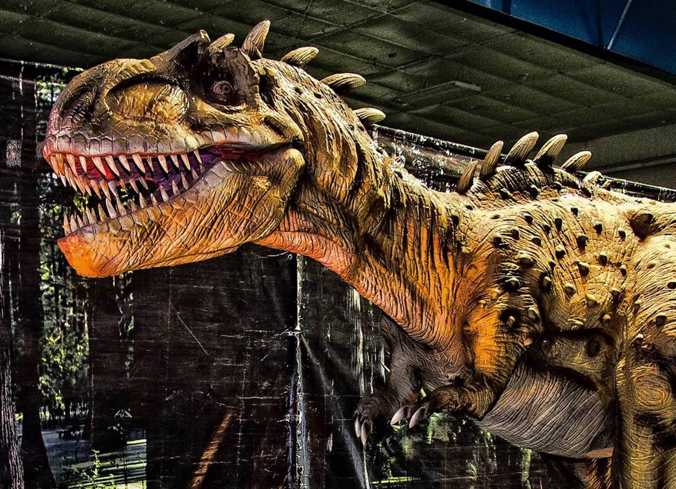 Dinosaurs come back to life at the El Paso County Coliseum
