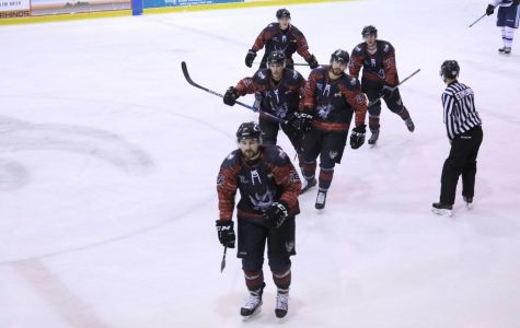 Hockey excels across Sun City: What's next with El Paso Rhinos