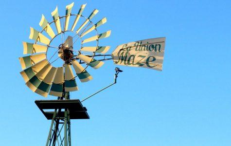La Union Corn Maze reopens for fall season