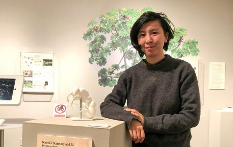 "Vicky Zhuang, exhibit curator and Biodiversity Collections Manager at UTEP poses next to a 3D model of an ant on display at the ""Tiny Tunnels, Big Connections: Ant Relationships Shape the World,"" exhibit at the Centennial Museum."