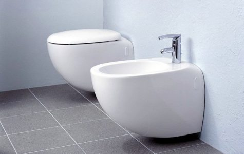 A bidet is a bowl or receptacle designed to be sat on for the purpose of washing the human genitalia.