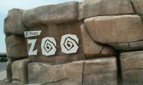 City of El Paso changes course and delays openings of Zoo and Museums