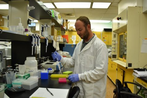 Dr. Philip Lavretsky, assistant professor in UTEP's Department of Biological Science, will be leading a study on hybridization that began in September.