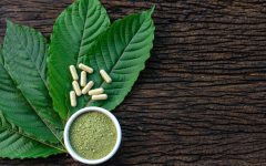 Opinion: Is Kratom a party drug or medicinal herb? Here are the facts