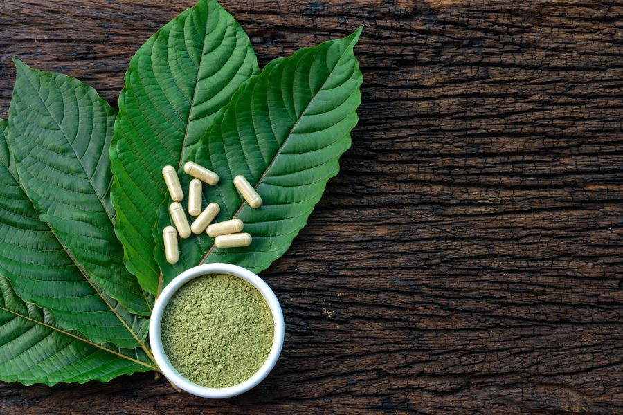 Mitragyna speciosa or kratom leaves with medicinal products in capsules and powder in white ceramic bowl and wooden table, top view.