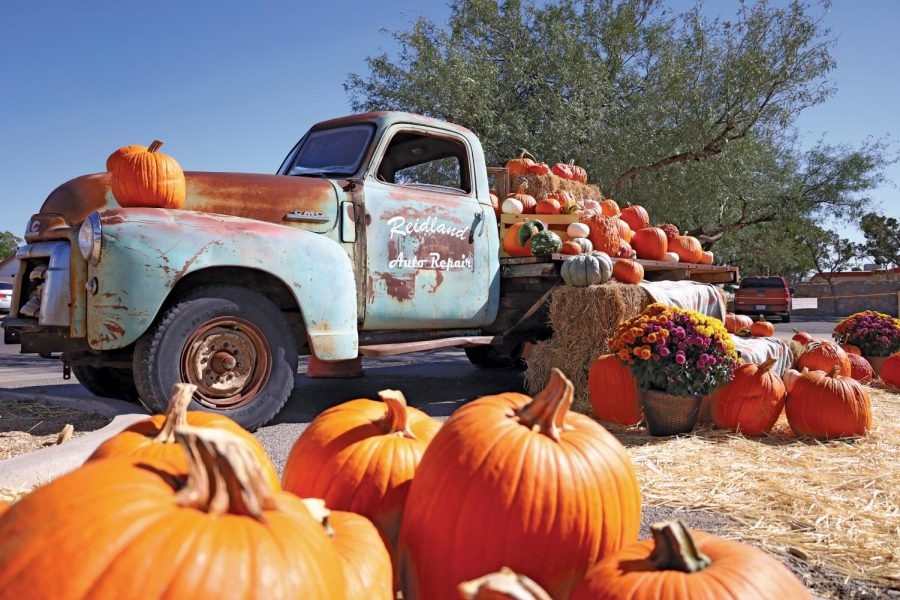 The Beth El Bible Church Pumpkin Patch is one of many Fall/Halloween activities in the city and is located on 6440 Montana Ave. and open 9am-8pm.